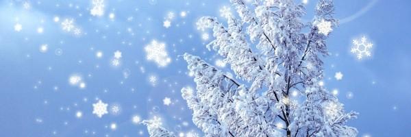 必見!冬に車のフロントガラスが凍る時の対処法