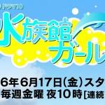 NHKドラマ10『水族館ガール』の原作は?キャストやあらすじ等